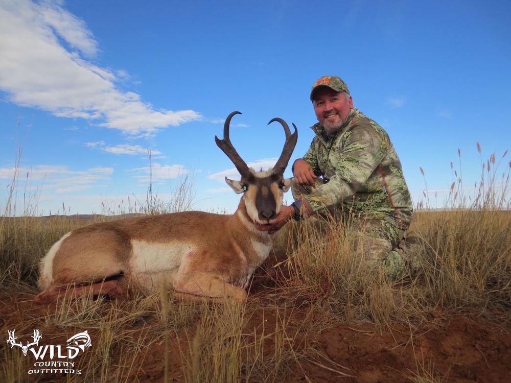 buck pronghorn utah antelope hunt.jpg