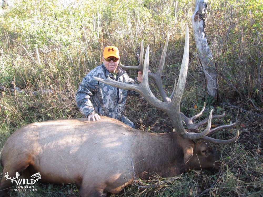 utah bull elk rifle hunt (7.jpg