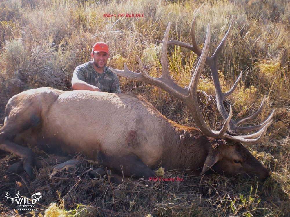 utah bull elk rifle hunt 360.jpg