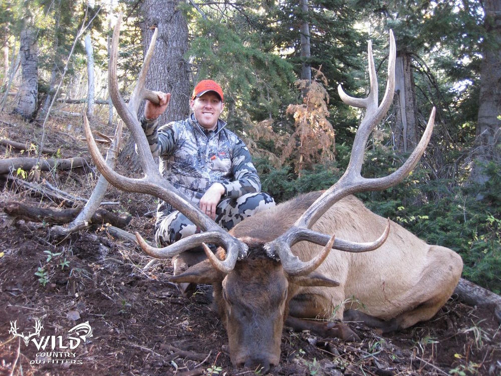 utah bull elk rifle hunt andrew rich.jpg