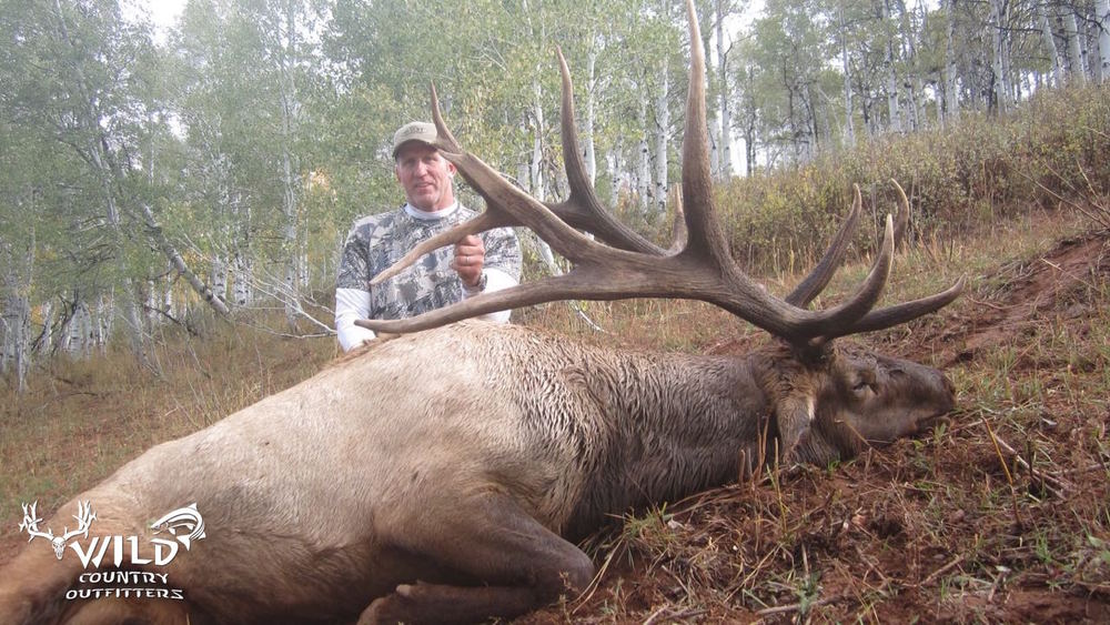 utah bull elk rifle hunt danny rich.jpg