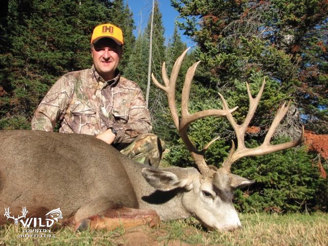 utah buck mule deer hunt hornady.jpg