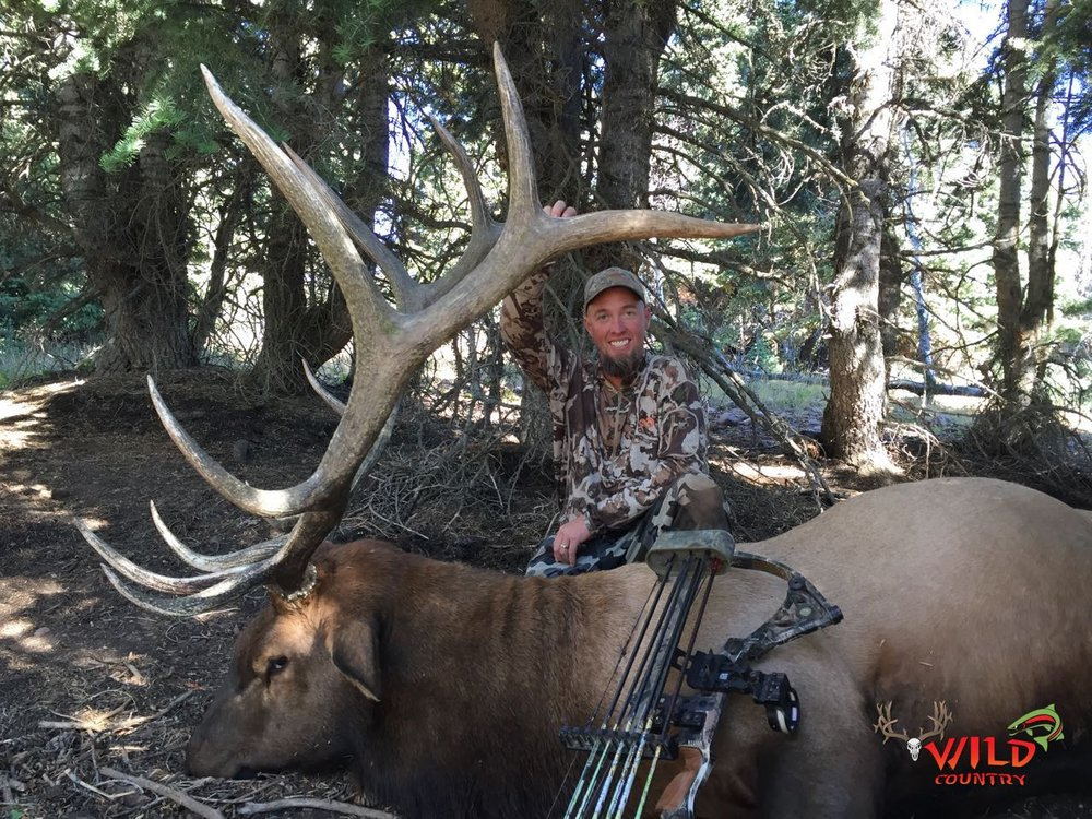 Utah bull elk hunting 2016 archery (3).jpg