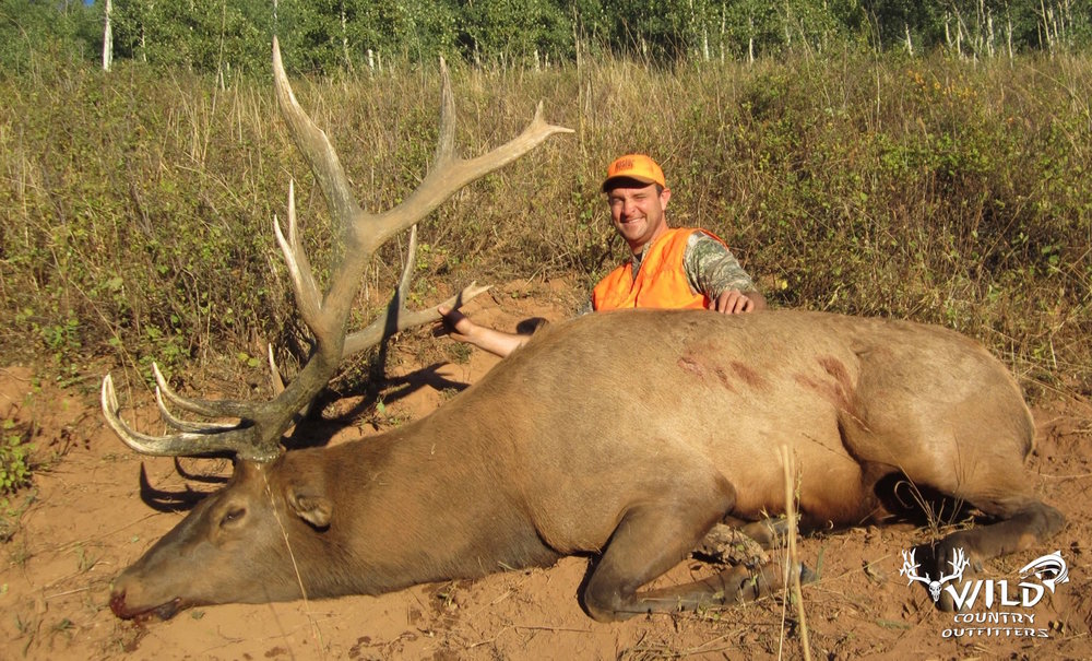 utah+bull+elk+hunt+rocky+mountains+2015+-+66.jpg