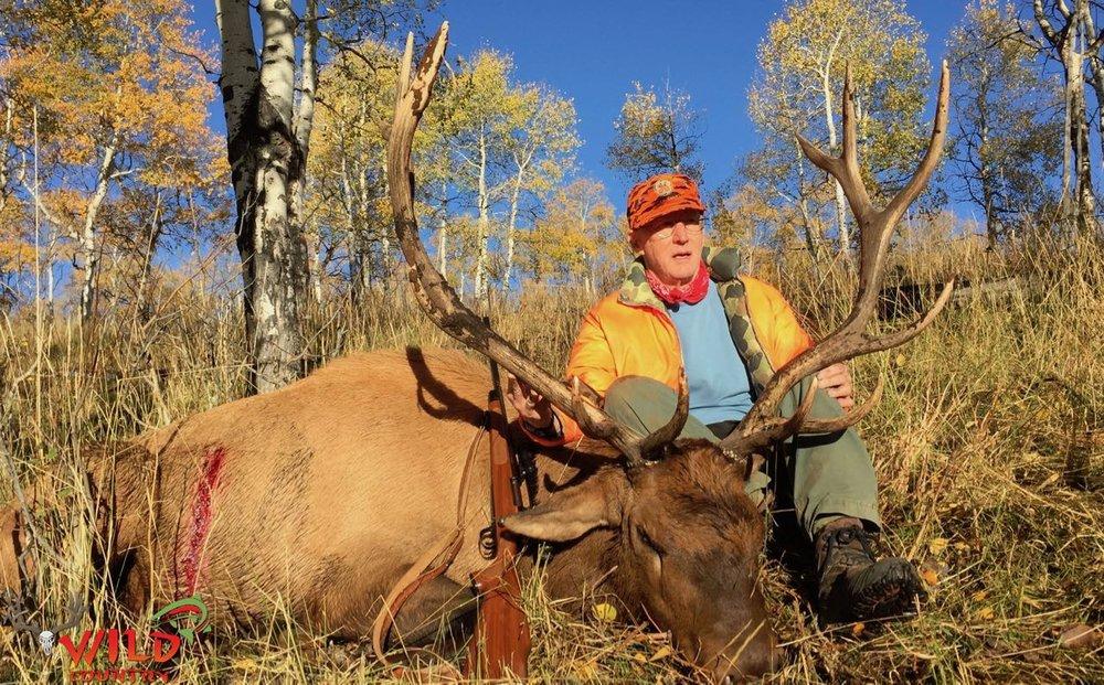 2016-state-bull-elk-deseret- 19.jpg