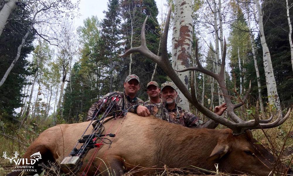 mossy oak 2015 utah bull elk archery hunt.jpg