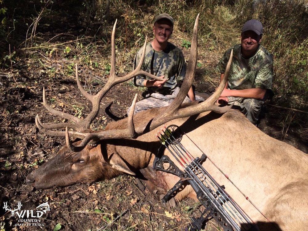 utah archery bull elk hunt 2015.jpg