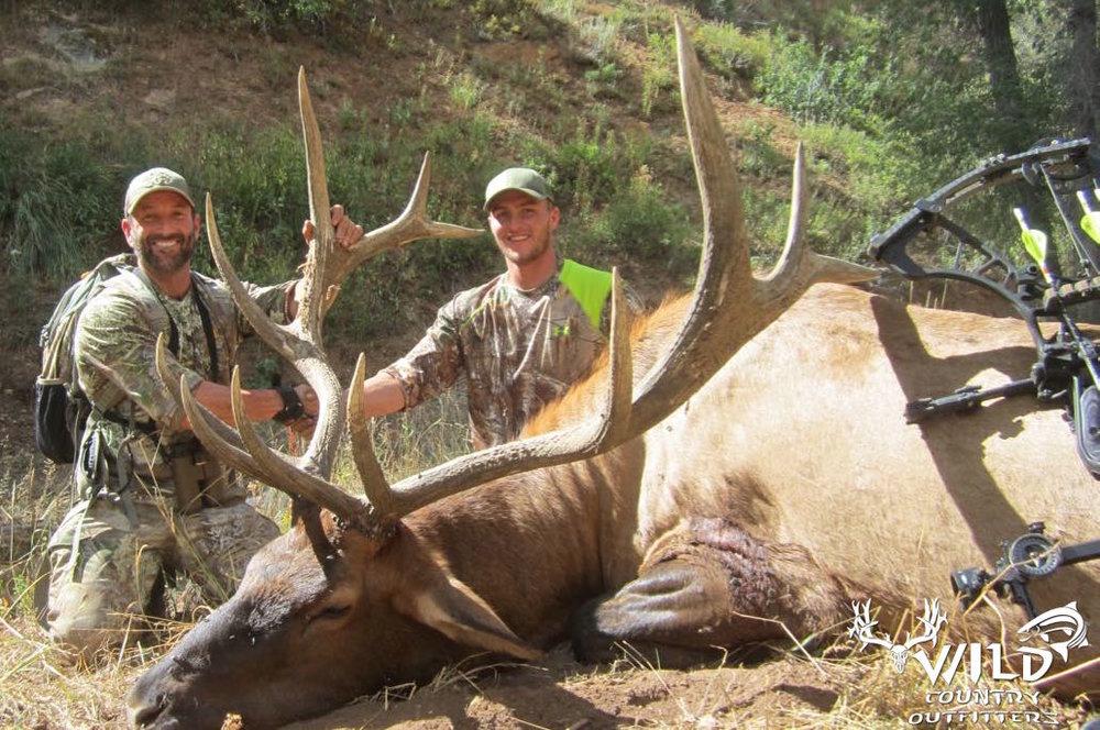 Utah bull elk hunt archery cam UA.jpg