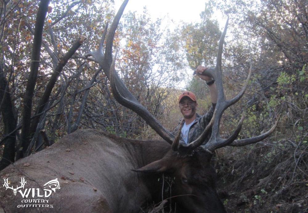 Utah bull elk hunt archery Lucas.jpg