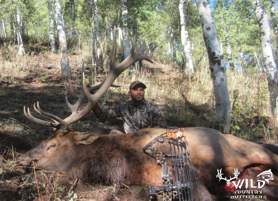Utah bull elk hunt archery Shane D UA.jpg