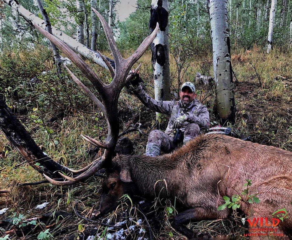 Archery Deseret Utah Bull Elk 2017 Wild Country Outfitters Lee Lakosky.jpg