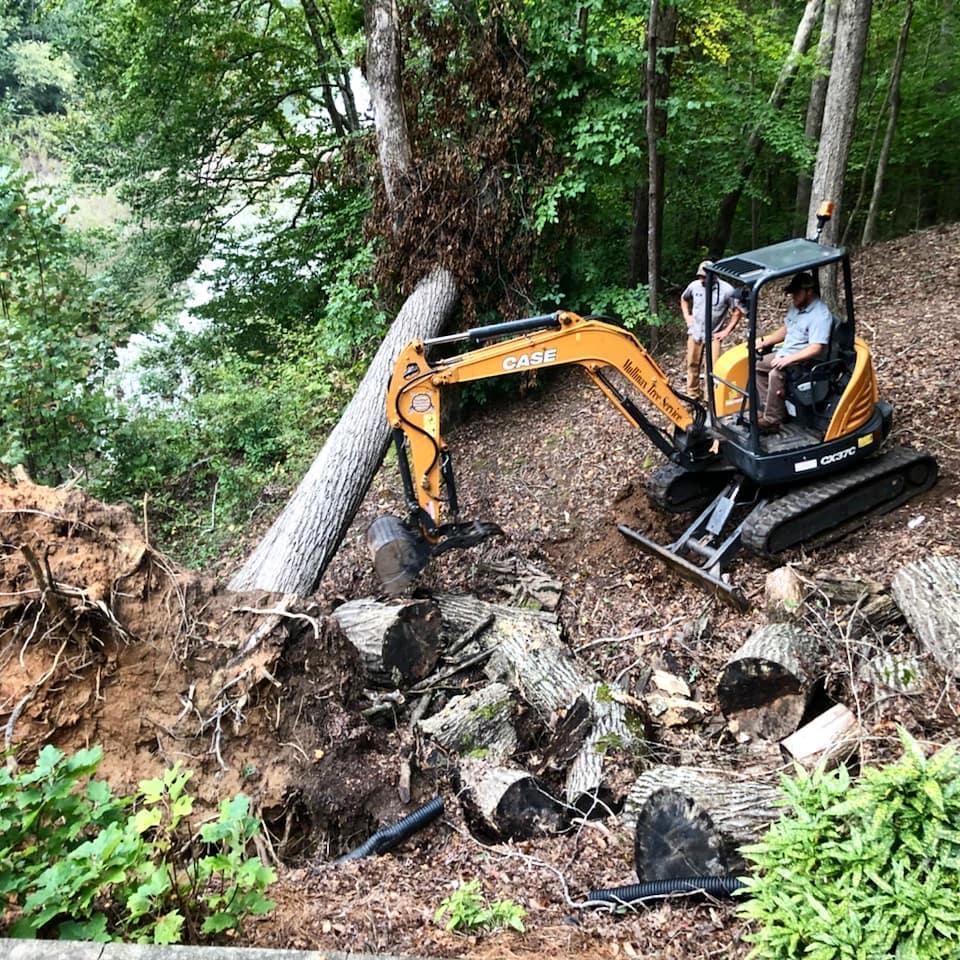 Storm Damage Cleanup in Seneca
