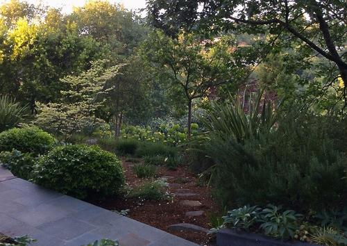 Katherine vincent landscape design