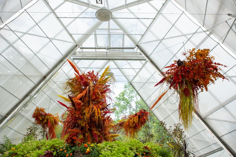 Botanical Gardens - Joanne Mott- Vic