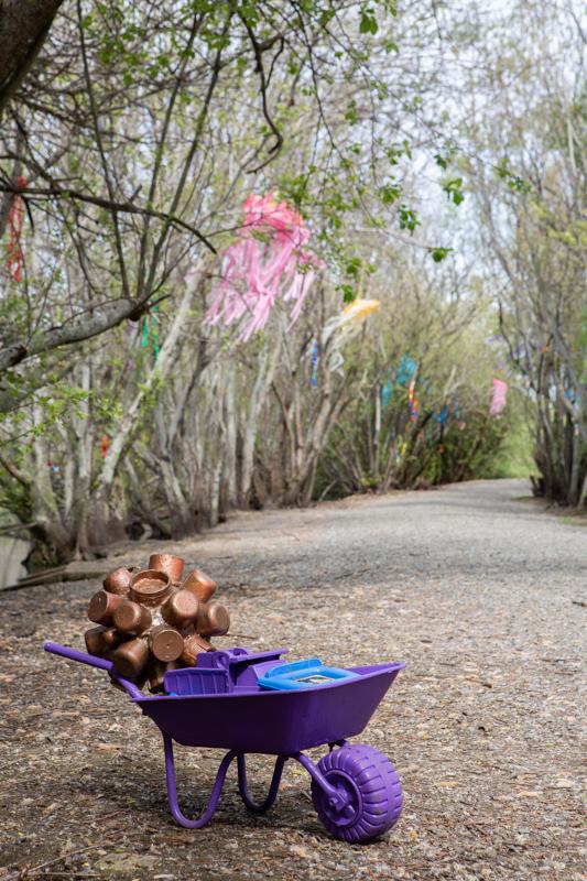 Lake Wendouree - Rachel Hallinan - NSW