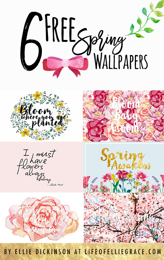 Spring floral free wallpapers. Manchester, UK beauty and lifestyle blog. Uk travel blog. UK Beauty Blog. Manchester Beauty blog. UK Lifestyle blog. Manchester lifestyle blog. UK Fashion Blog. Manchester Fashion Blog. Ellie Dickinson. Ellie Grace. Ellie Grace Dickinson.