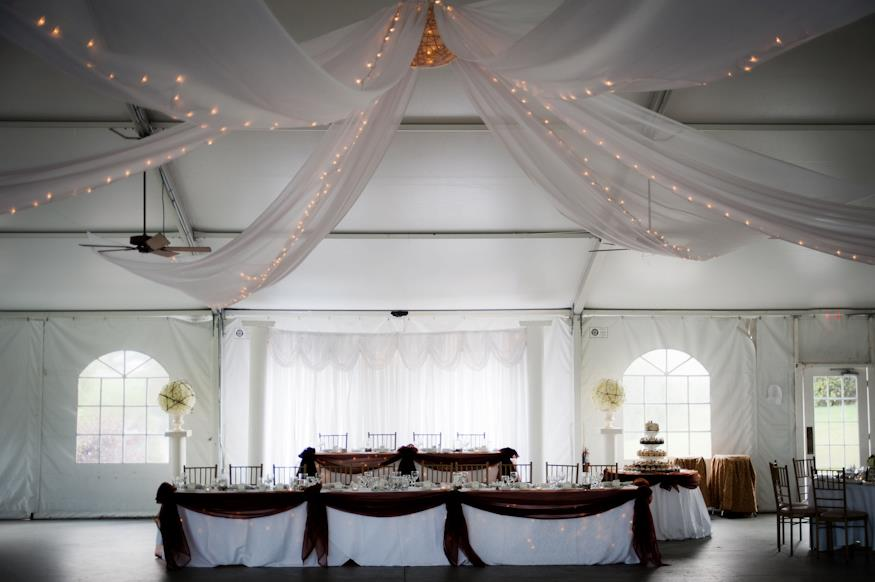 Backdrop and Ceiling Treatment