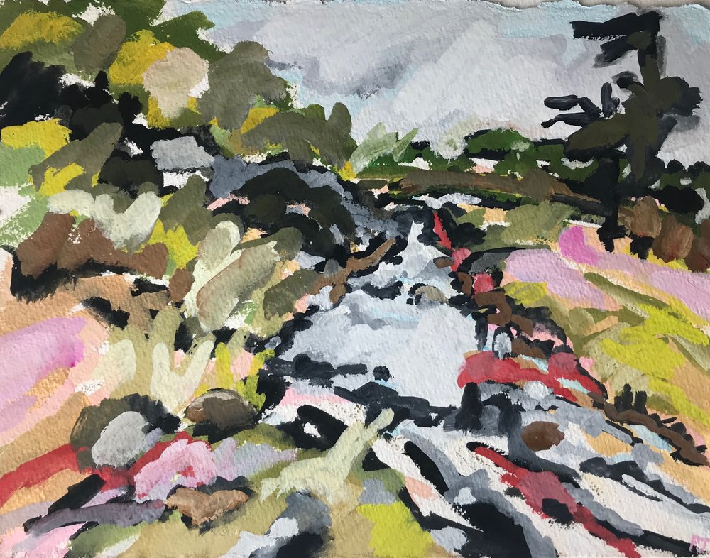 Paula Jenkins_Apsley River at Apsley Falls, 27x35cm, Gouache on Arches paper.jpg
