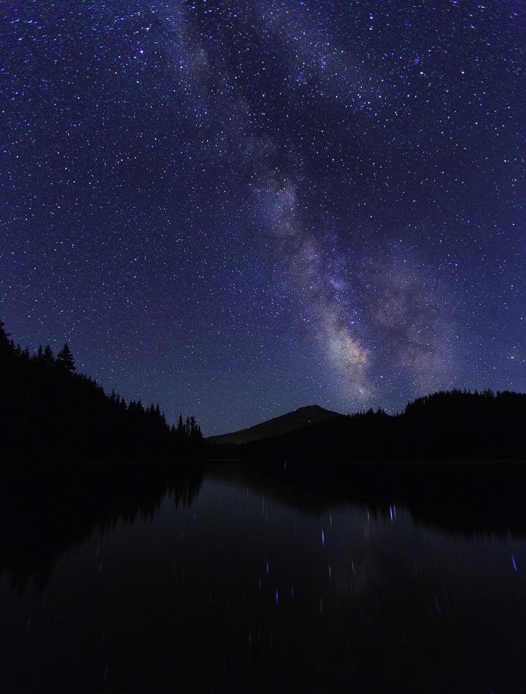 washington night sky21.jpg