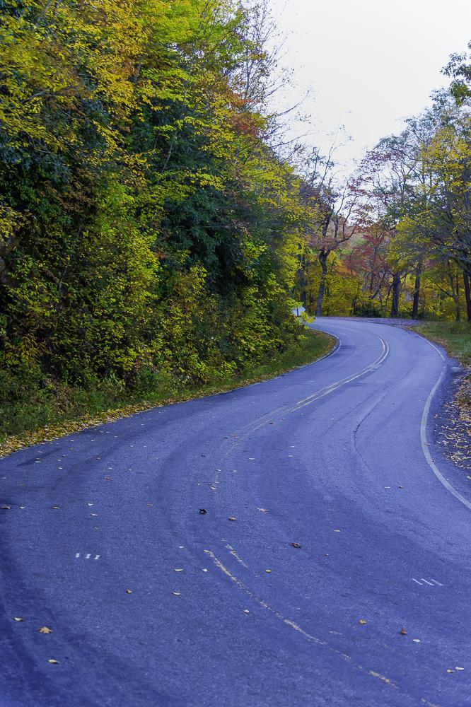 North GA Mountains12.jpg