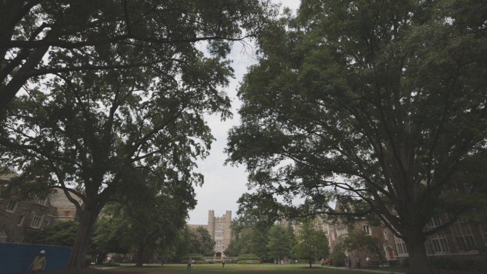Beautiful old oak trees engulf Duke University's campus quad in Durham, North Carolina