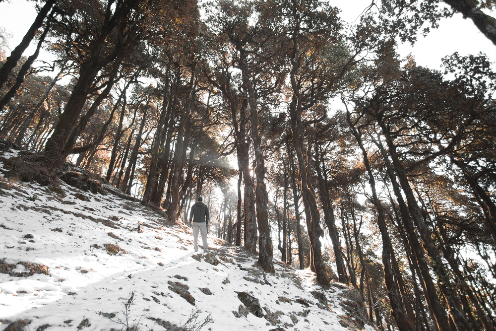 We walked through a forest on the way to Nag Ttibba. This area is very mountainous and offers a variety of environments.