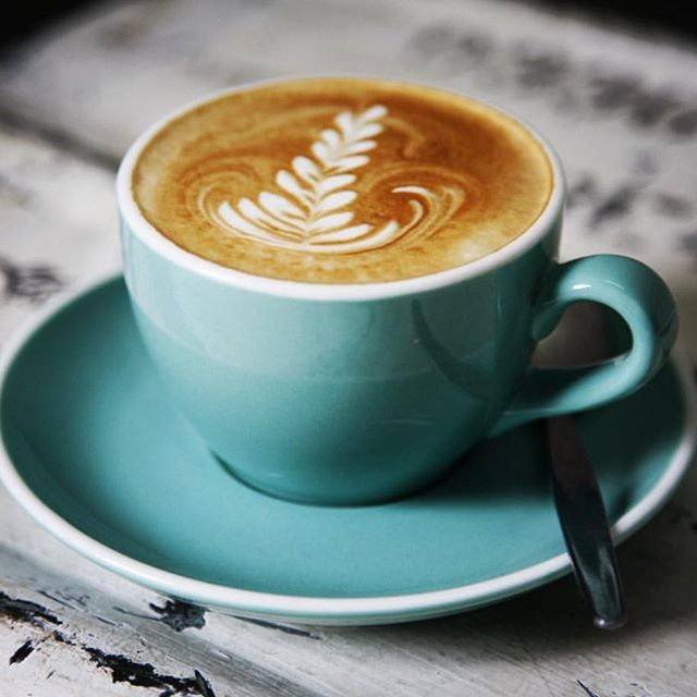@flyingpigcoffee has us covered for a sneaky flat white! Their beans have been specially roasted to work best with plant based milks so the cute little cow mamas are left alone to do their thing. Winners!