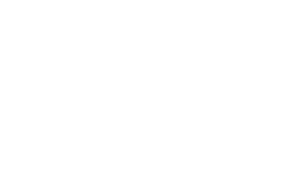 Silver Bell Web Solutions Logo