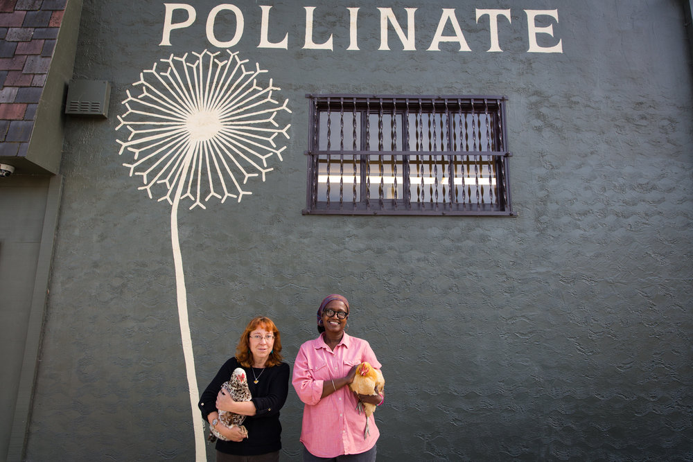 Pollinate Farm and Garden, a 2017 Greenie Award Indie Award winner and an ICA Fund Good Jobs Education company.