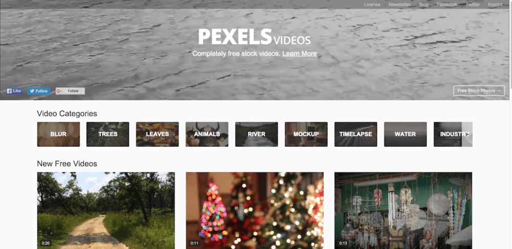 PexelsVid.png