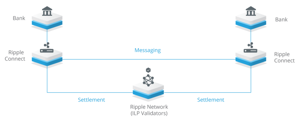 How Does Ripple actually work!