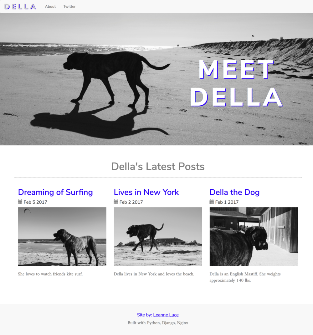 Della Blog by Leanne Luce in Python Django