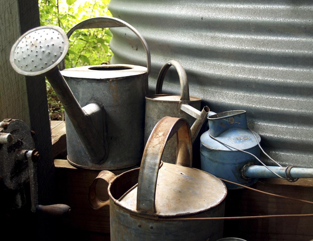 Vintage Watering Cans.jpg