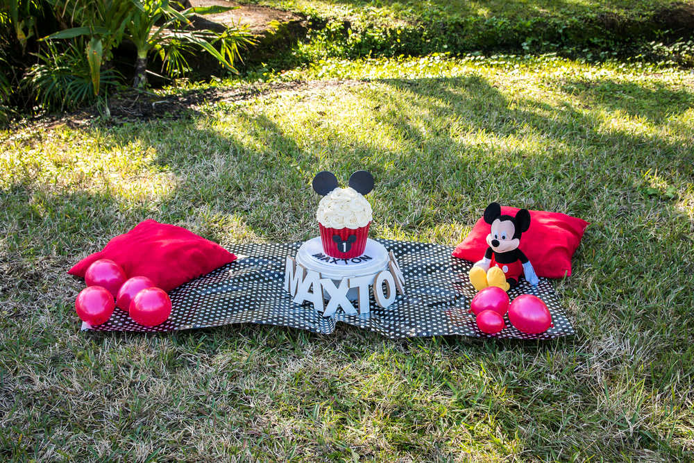 The University of Tampa, Smash Cake session , Mickey Mouse Cake