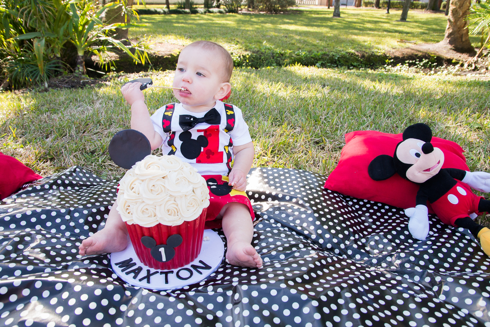 Tampa Smash Cake Session, Mickey Mouse