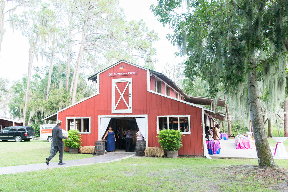 Old McMicky's Farm wedding Mission I Do, Tampa wedding, Tampa wedding photographer