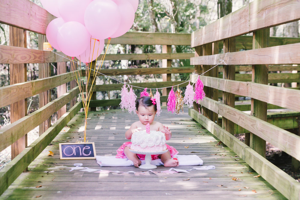 Tampa smash cake session , Lettuce Lake park session, Tampa photographer