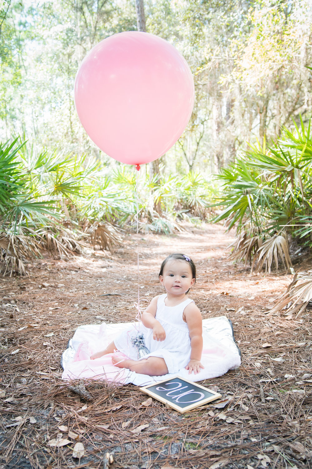 Tampa smash cake session, Lettuce Lake park portrait session, Tampa photographer, Tampa baby photographer