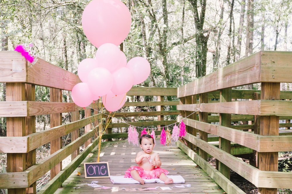 Tampa smash cake session , Lettuce Lake park portrait session , Tampa photographer, Tampa baby photographer