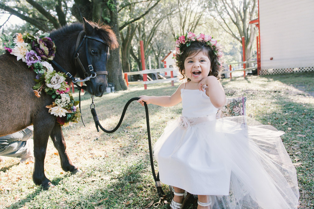 Magical PONY session, Tampa photographer, Tampa wedding photographer