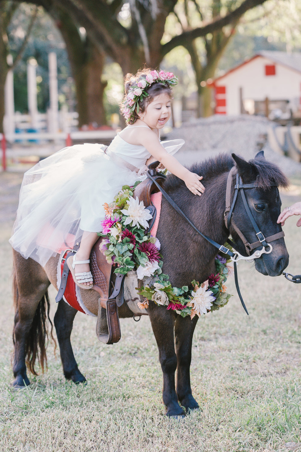 Magical Pony session, Tampa photographer, Tampa kids, Tampa wedding photographer