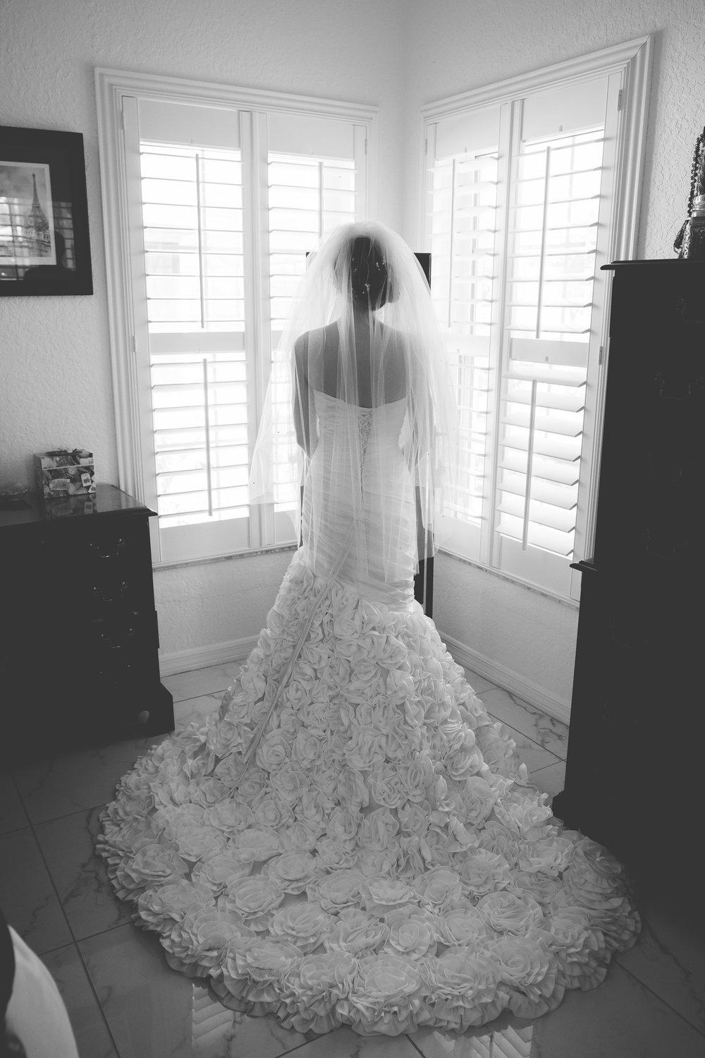 apollo-beach-wedding-photographer, wedding-dress-florida