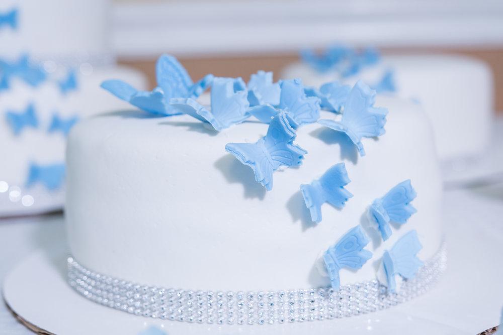 Wesley-Chapel-Quinceañera-party, Quinceañera-birthday-cake