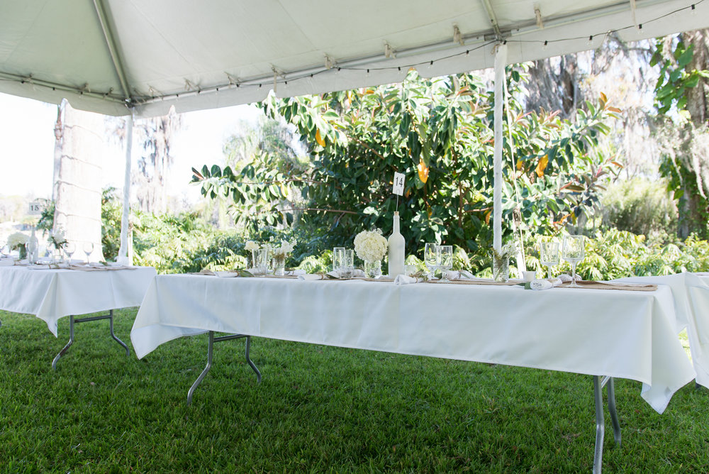 lutz-backyard-wedding-decorations, tampa-wedding-photographer