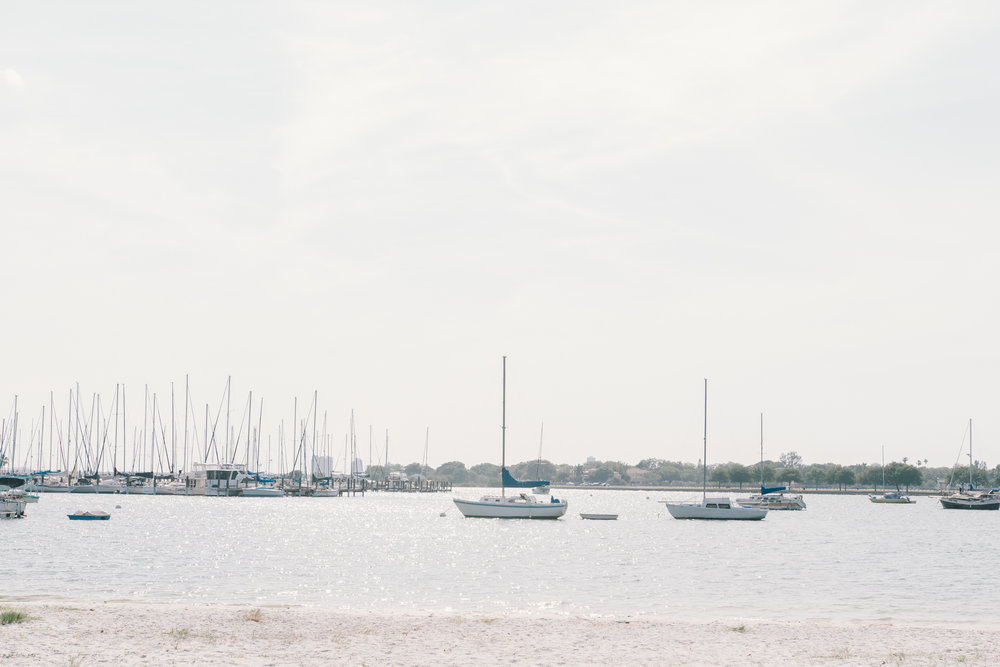 Davis-Island-photo