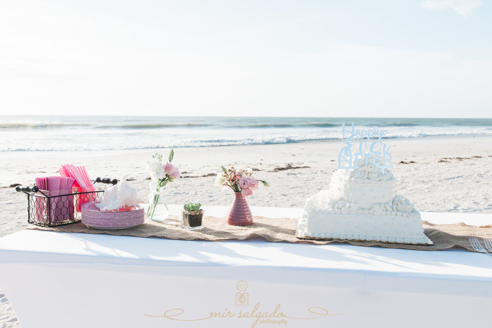 St.Pete-beach-wedding-cake-cutting, St.Pete-wedding-photo, wedding-cake