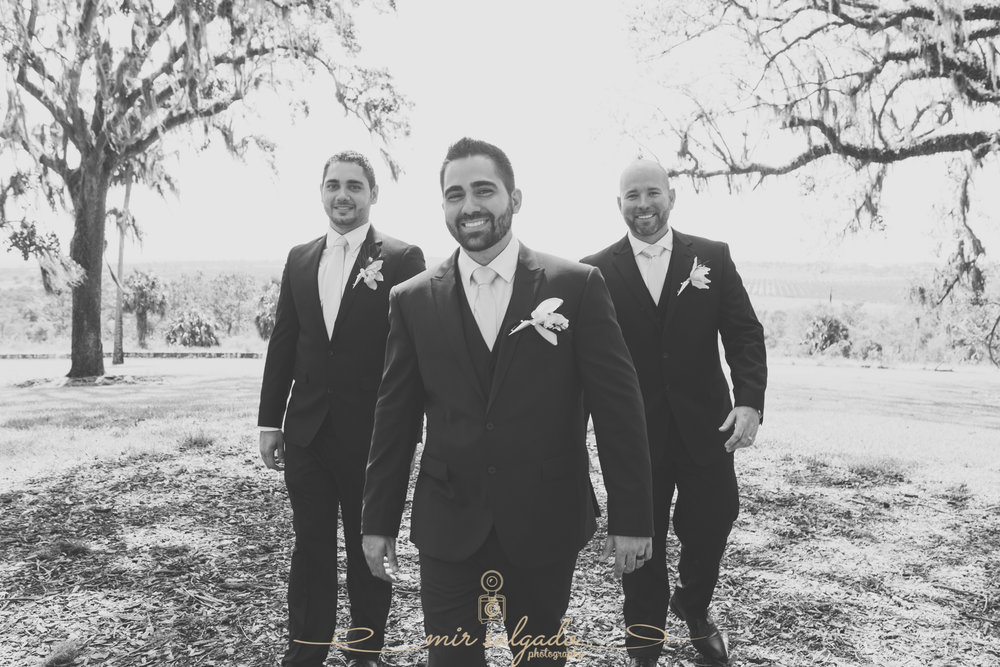 groom-and-groomsmen-photo, Bok-tower-wedding-photo