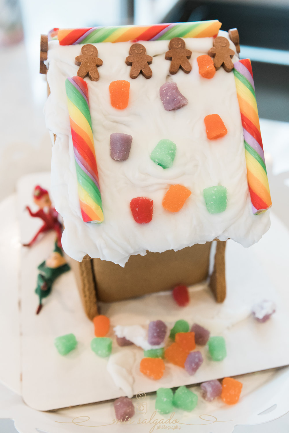 Tampa-gingerbread-session-with-kids, Tampa-in-home-session