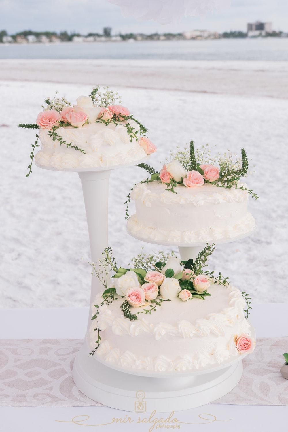 Florida-beach-wedding-photo, beach-wedding-cake, Florida-photographer