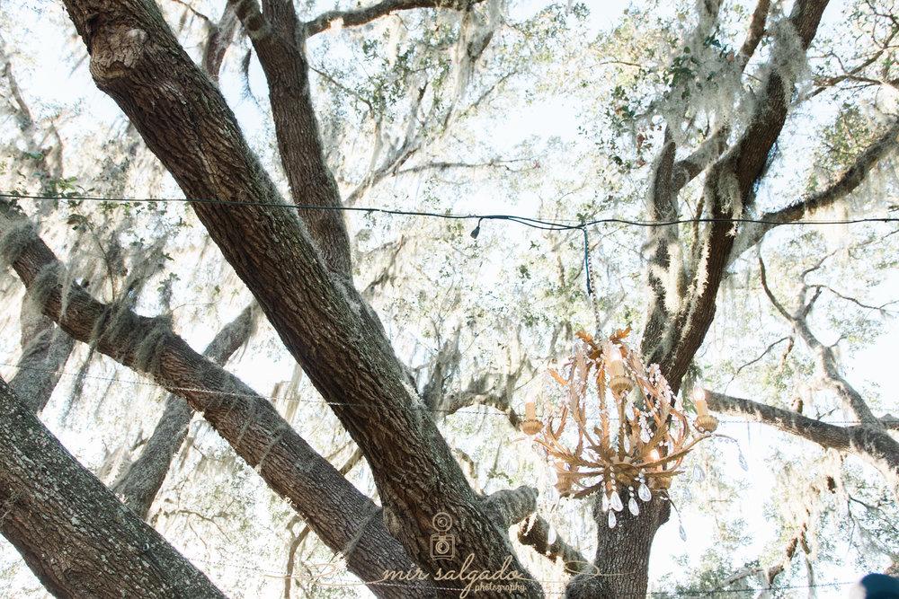 The-Lange-farm-wedding, Tampa-wedding-photo, chandelier-wedding-deco